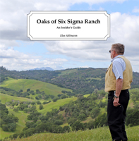 Product Image for Oaks of Six Sigma Ranch
